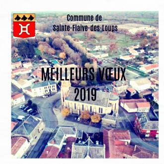 Vœux 2019 Sainte Flaive-des-Loups